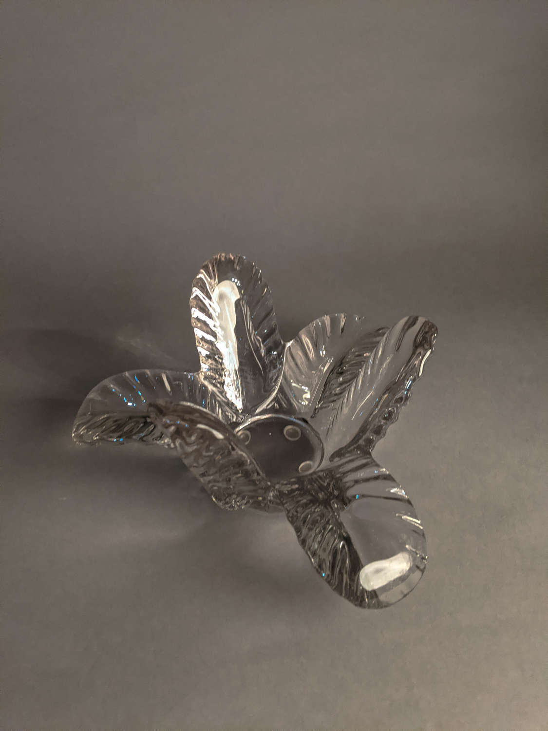 Glass Bowl by Vannes
